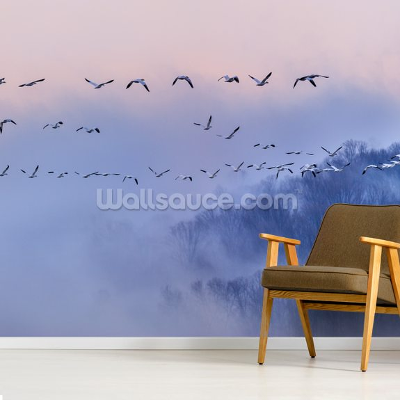 Snow Geese mural wallpaper room setting