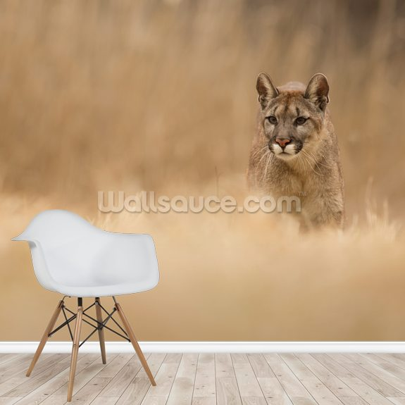Cougar mural wallpaper room setting