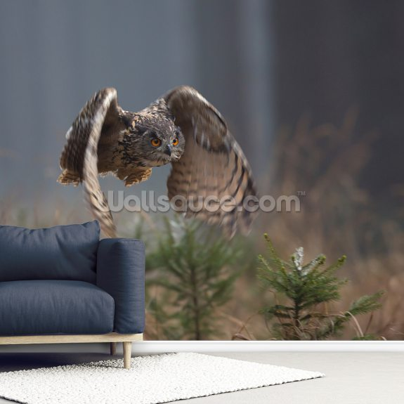 Eurasian Eagle Owl mural wallpaper room setting