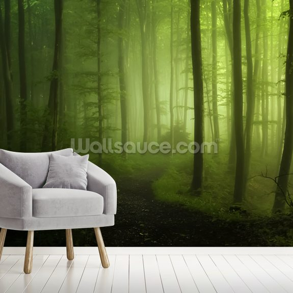 Misty Green Forest wallpaper mural room setting
