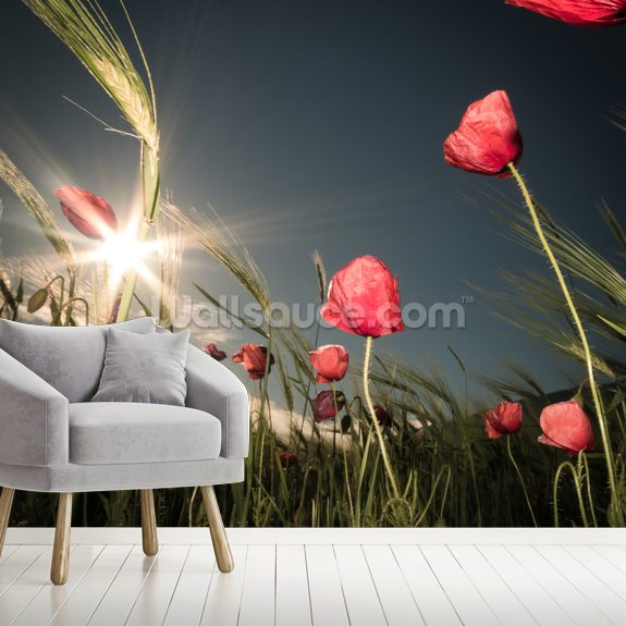 Summer is Here wallpaper mural room setting