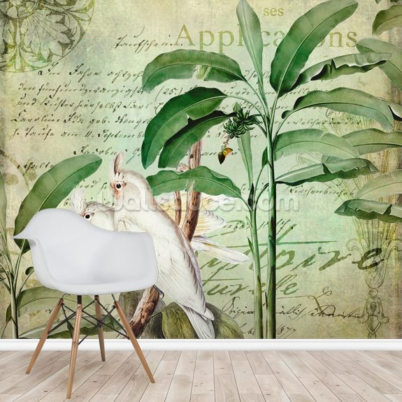 Cockatoos Nostalgic Journey wallpaper mural room setting