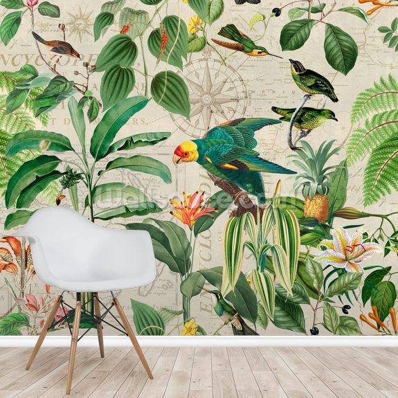 Kingdom of Birds wall mural room setting