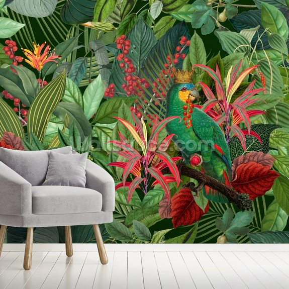 Parrot King wallpaper mural room setting