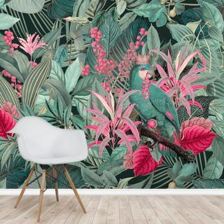 King of Parrots Wallpaper Wall Murals