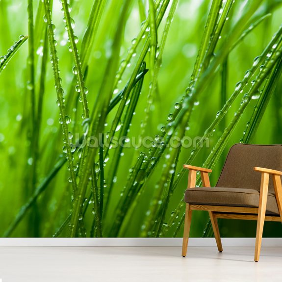 Grass mural wallpaper room setting
