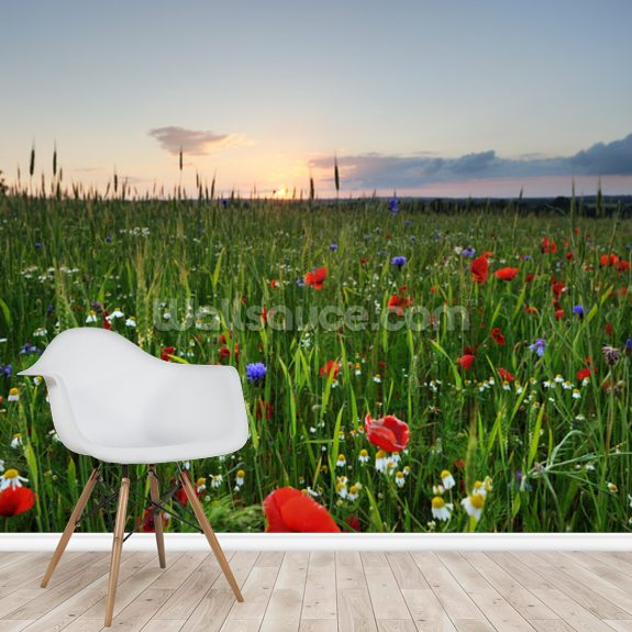 Poppy Fields wall mural room setting