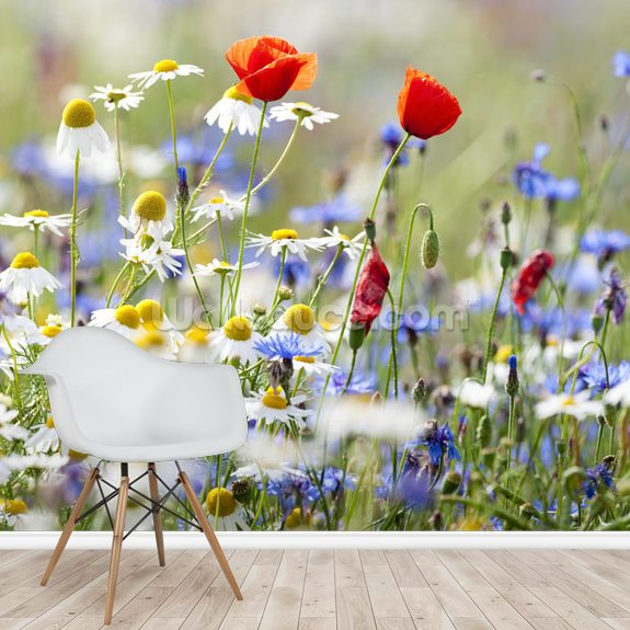 Wild Flower Meadow mural wallpaper room setting