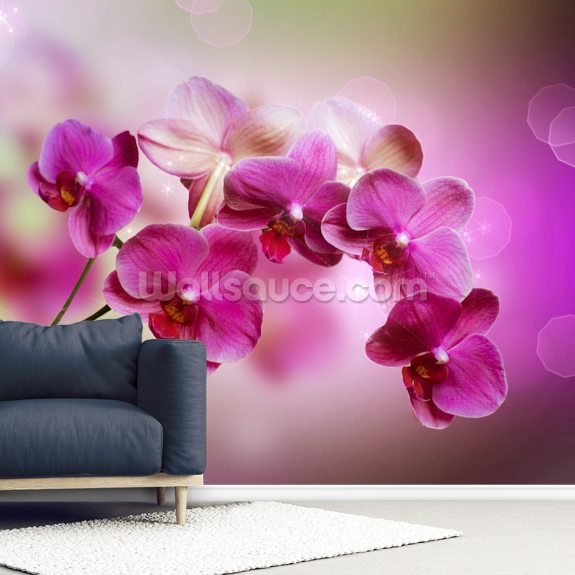 Orchid wall mural room setting