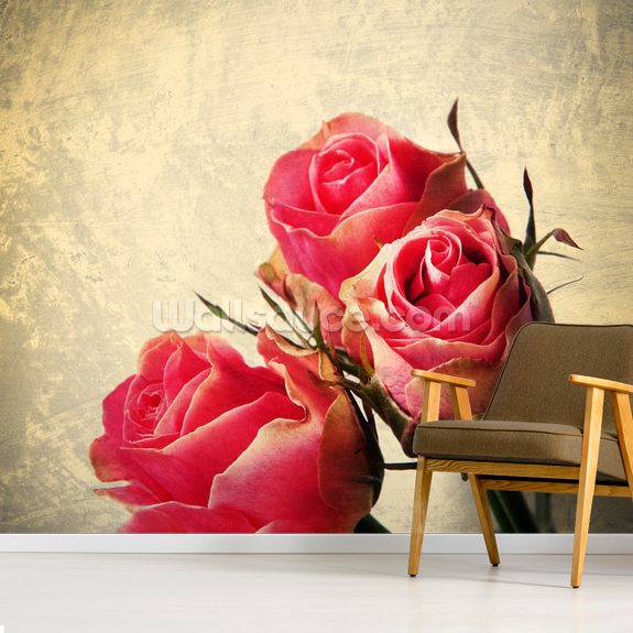 Vintage Roses mural wallpaper room setting