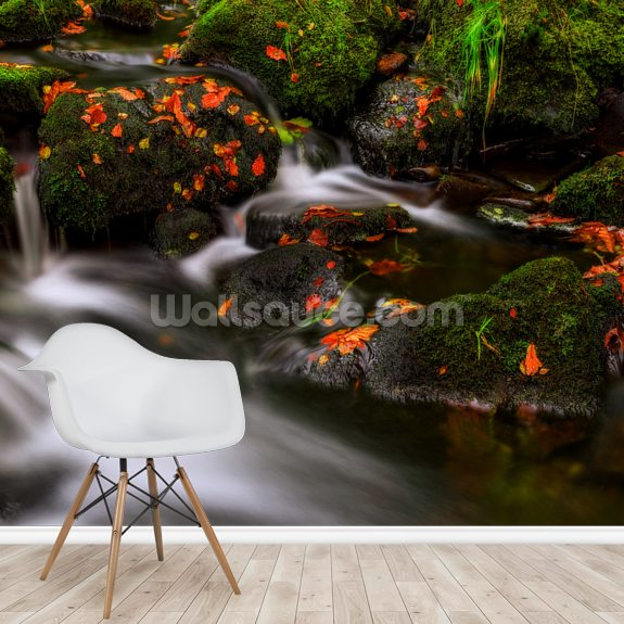 Autumn Melodies wall mural room setting