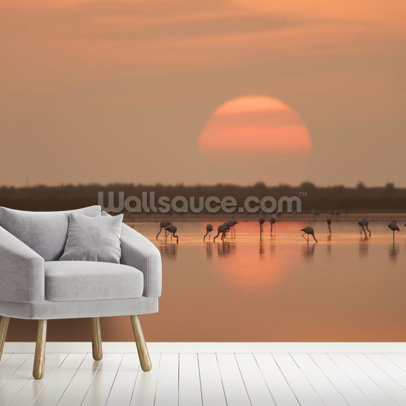 Flamingos at Sunrise mural wallpaper room setting