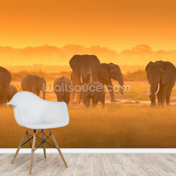 Golden Light wall mural room setting