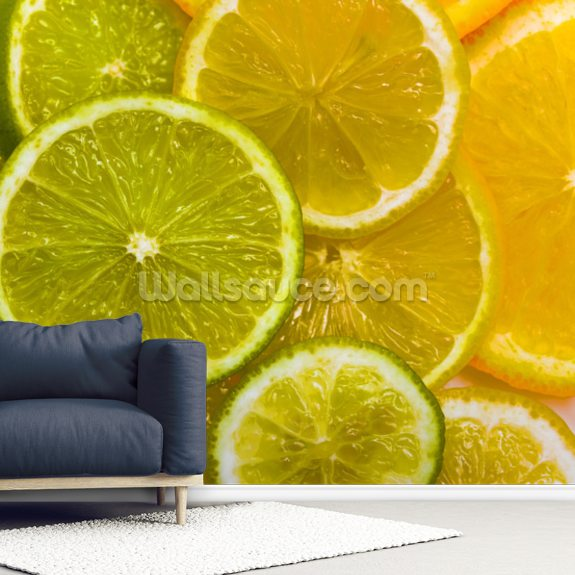 Orange, Lemon and Lime Slices wallpaper mural room setting