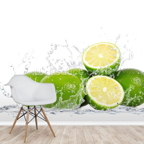 Lime Splash wall mural room setting