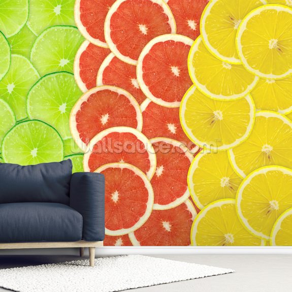 Citrus Slices mural wallpaper room setting