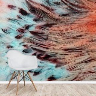 Blue and Pink Eagle Feathers Wallpaper Wall Murals