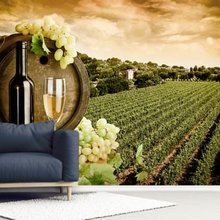 Wine and Vineyard Wallpaper Wall Murals