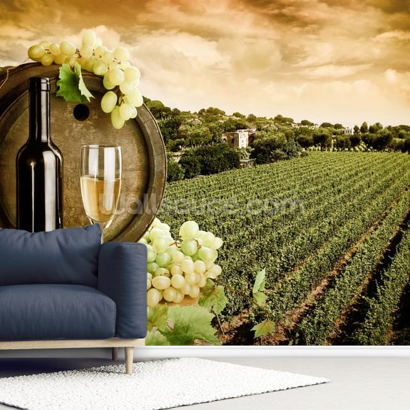 Wine and Vineyard wall mural room setting