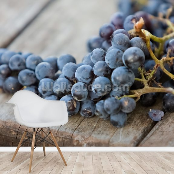 Wine Grapes mural wallpaper room setting