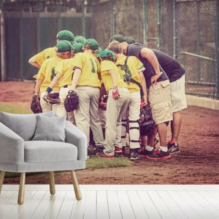 Baseball Childhood Wallpaper Wall Murals