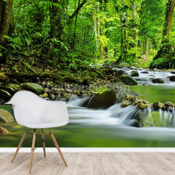 Tropical Mountain Stream wallpaper mural room setting