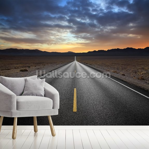 Desert Highway wallpaper mural room setting