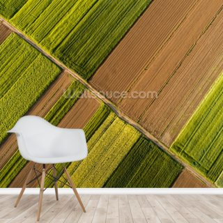 Aerial View of Fields Wallpaper Wall Murals