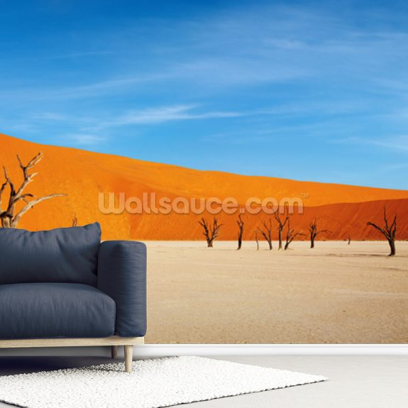 Namib Desert wall mural room setting