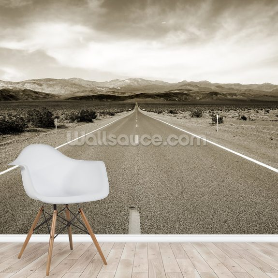 Empty Californian Highway in the Desert mural wallpaper room setting