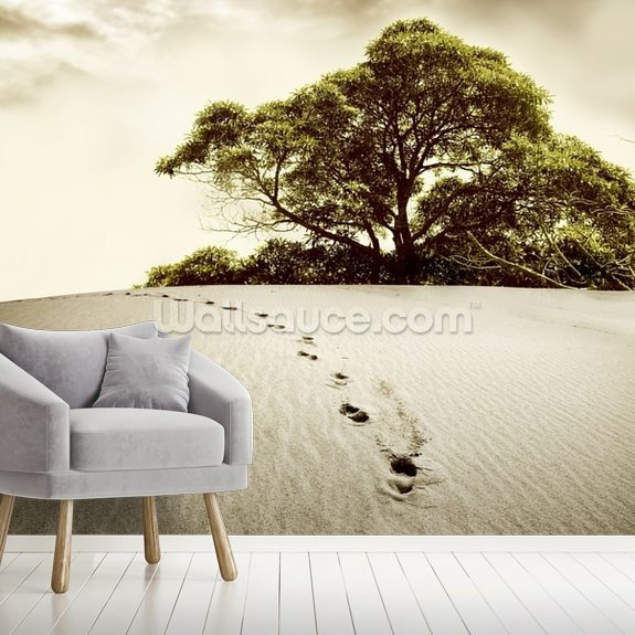 Desert mural wallpaper room setting