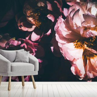 Pastel Petals Wallpaper Wall Murals