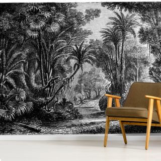 Antique Illustration of Indian Jungle Wallpaper Wall Murals