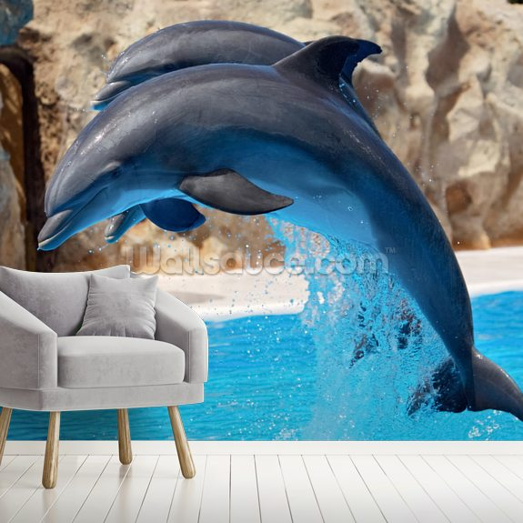Dolphins wall mural room setting