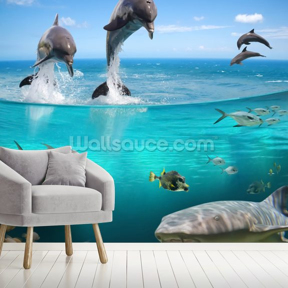 Dolphins Playground wallpaper mural room setting