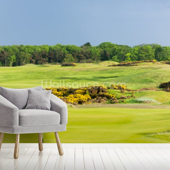 St Andrews Golf Course wall mural room setting