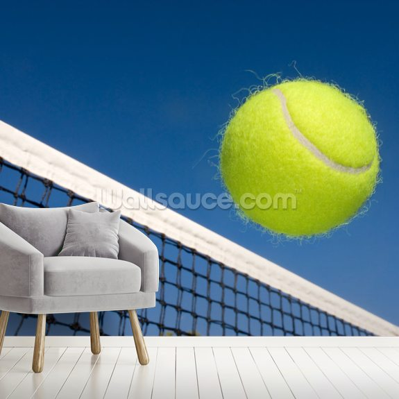 Tennis Bat and Net wall mural room setting