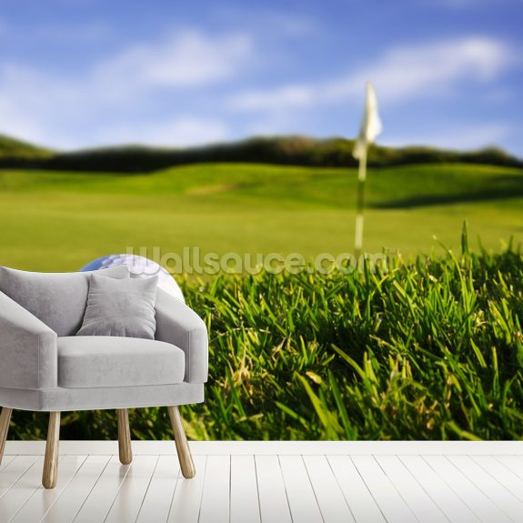 Golf Ball mural wallpaper room setting
