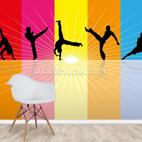 Martial Art wall mural room setting