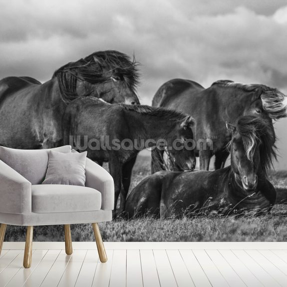 Happy Horse Family mural wallpaper room setting