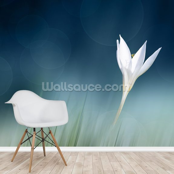 Lonely wallpaper mural room setting