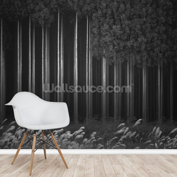 Afforestation mural wallpaper room setting
