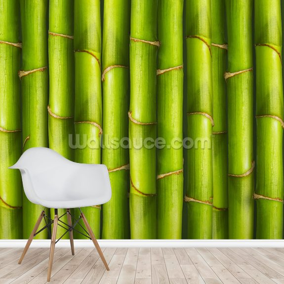 Bamboo - Light Green mural wallpaper room setting