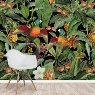 The Jungle Parrots Wallpaper Wall Murals