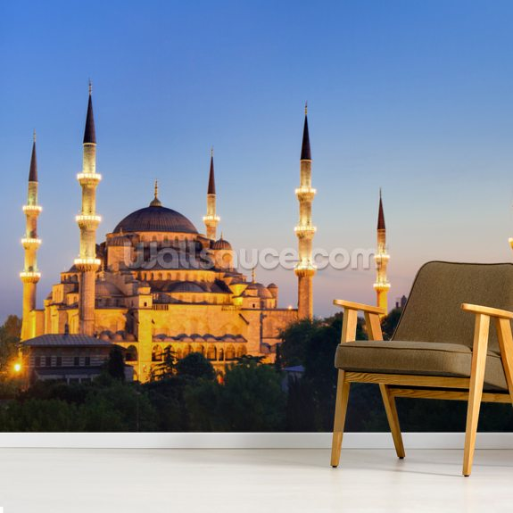Blue Mosque Istanbul wallpaper mural room setting
