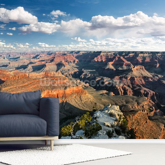 Grand Canyon mural wallpaper room setting