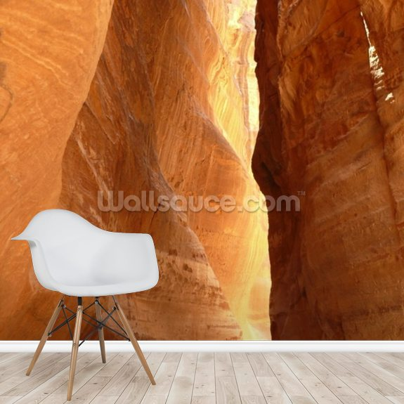 Narrow Gorge at Petra, Jordan wallpaper mural room setting
