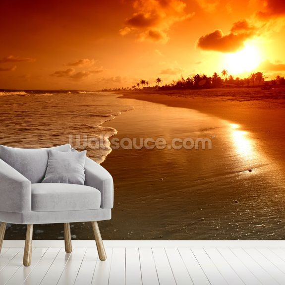 Ocean Sunrise wall mural room setting