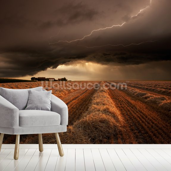 Dark Clouds mural wallpaper room setting