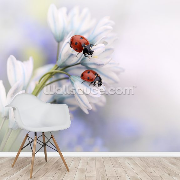 Ladybirds mural wallpaper room setting